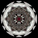 PSY1565b